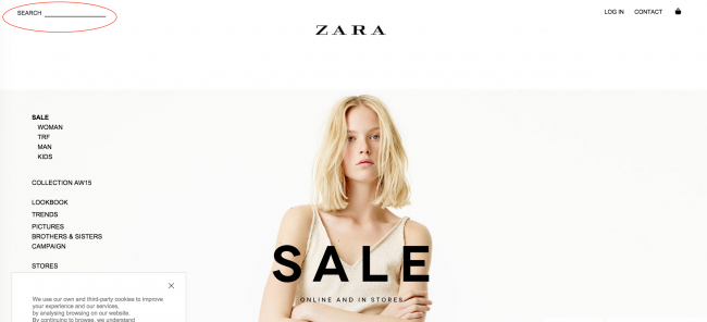 Zara_site_search