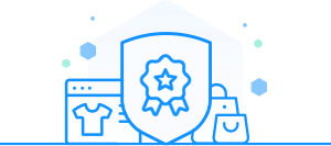 Advanced web security icon
